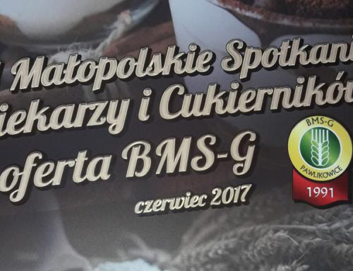 Targi BMS-G  Krynica 2017